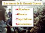les causes de la grande guerre