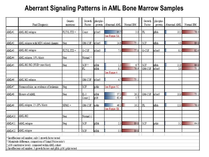 Aberrant Signaling Patterns in AML Bone Marrow Samples