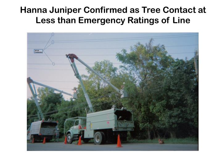 Hanna Juniper Confirmed as Tree Contact at