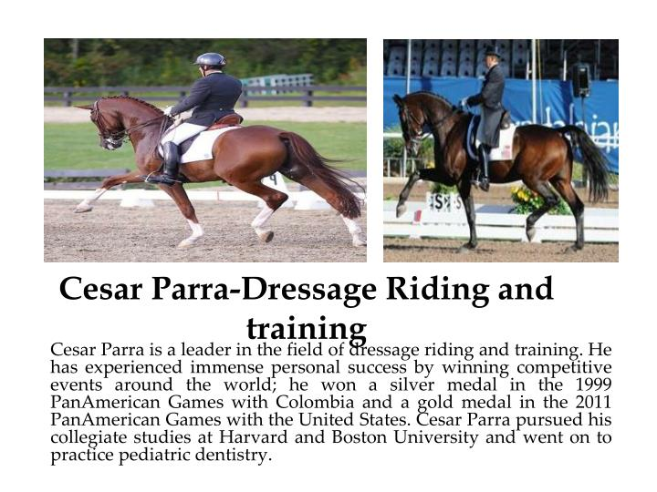 cesar parra dressage riding and training n.