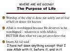 where are we going the purpose of life
