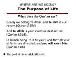 where are we going the purpose of life2