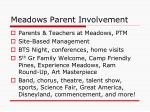 meadows parent involvement