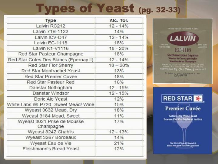 Types of Yeast