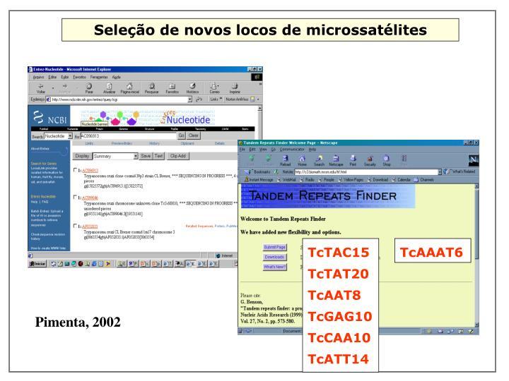 TcTAC15 TcTAT20