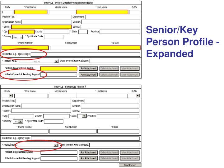 Senior/Key Person Profile - Expanded