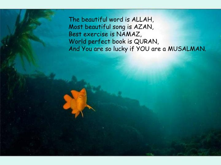 The beautiful word is ALLAH,
