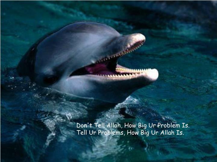 Don't Tell Allah, How Big Ur Problem Is. Tell Ur Problems, How Big Ur Allah Is.