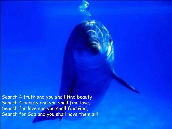 Search 4 truth and you shall find beauty,