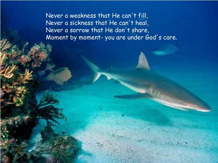 Never a weakness that He can't fill,