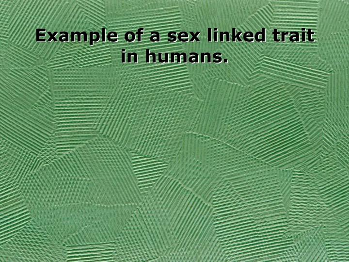 Example of a sex linked trait in humans.
