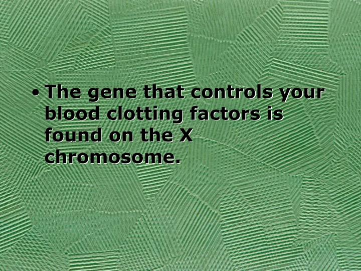 The gene that controls your blood clotting factors is found on the X chromosome.