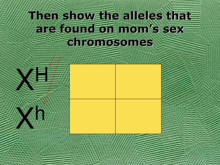 Then show the alleles that are found on mom's sex chromosomes