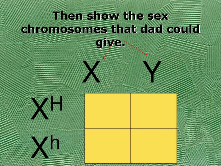 Then show the sex chromosomes that dad could give.