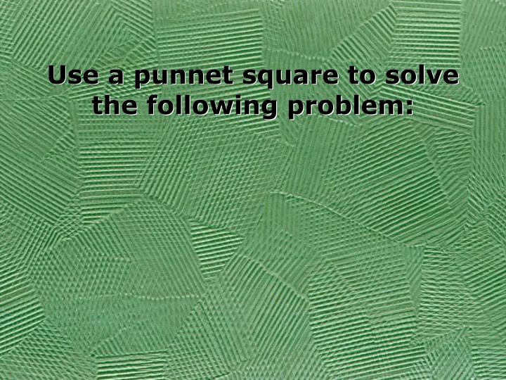 Use a punnet square to solve the following problem: