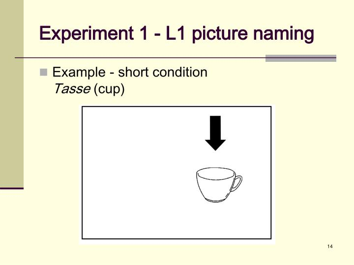 Experiment 1 - L1 picture naming