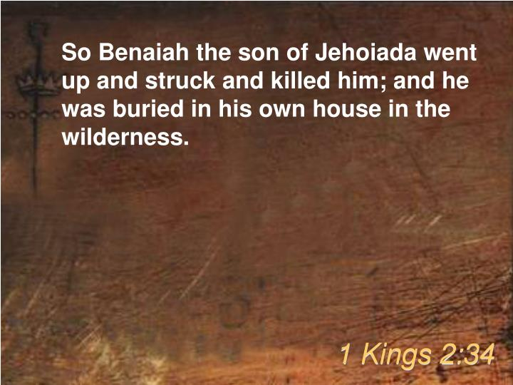 So Benaiah the son of Jehoiada went up and struck and killed him; and he was buried in his own house in the wilderness.
