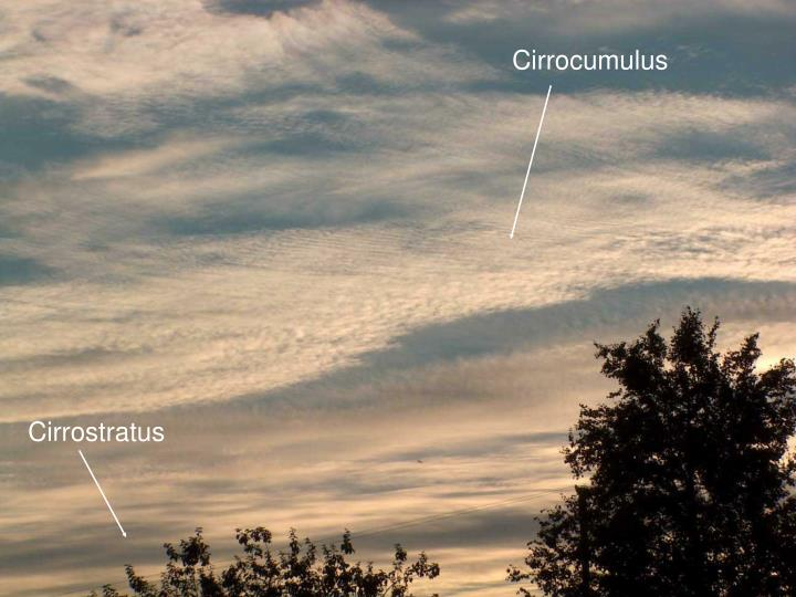 Cirrocumulus