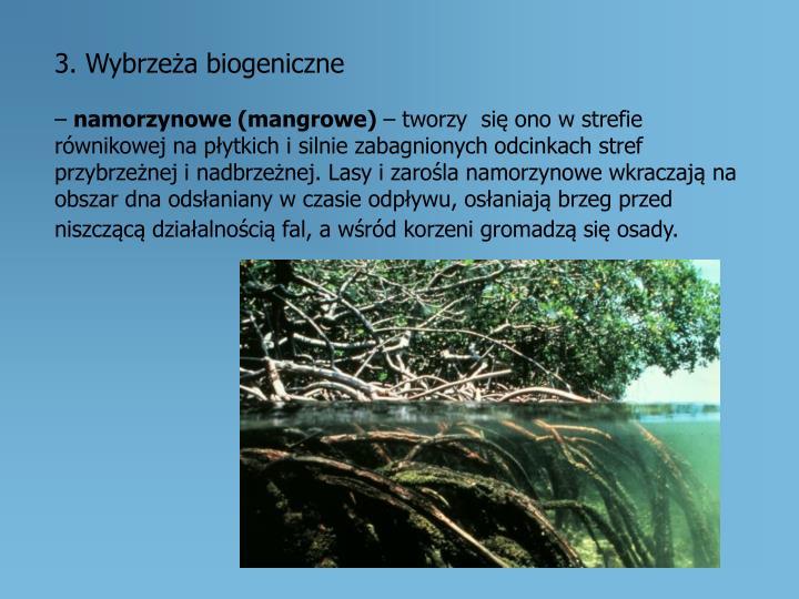 3. Wybrzeża biogeniczne