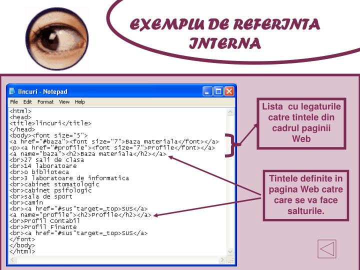 EXEMPLU DE REFERINTA INTERNA