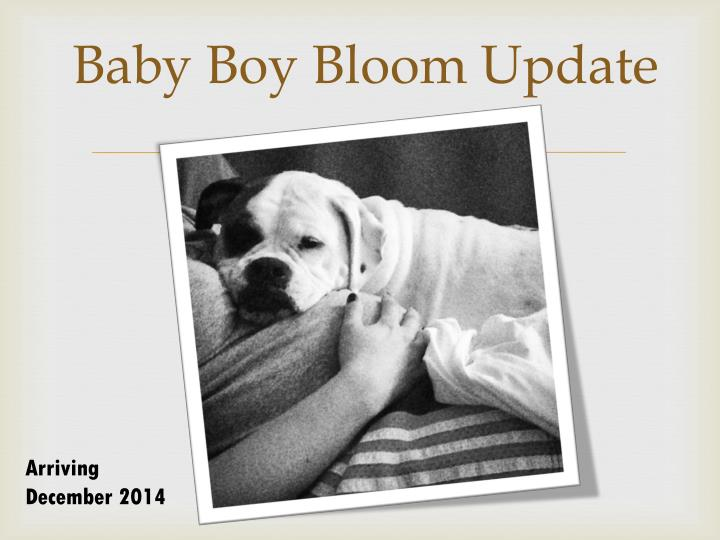Baby Boy Bloom Update