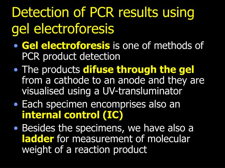 Detection of PCR results using gel electroforesis