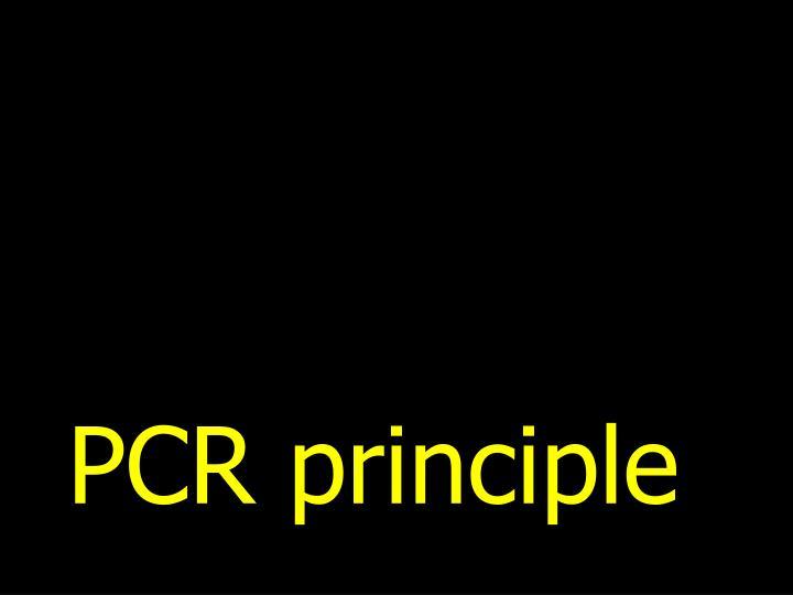 PCR principle