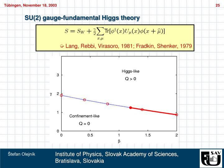SU(2) gauge-fundamental Higgs theory