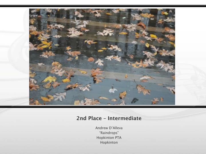 2nd Place – Intermediate