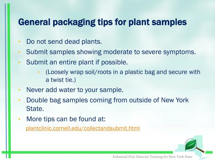 General packaging tips for plant samples