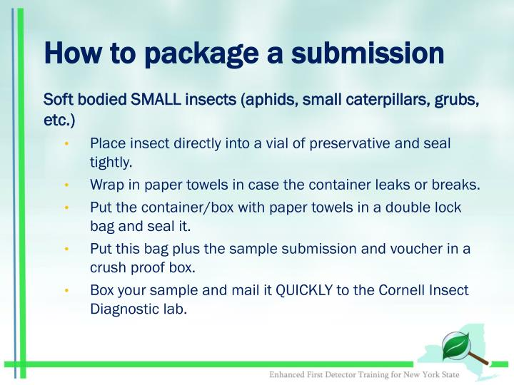 How to package a submission