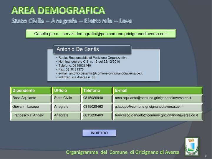 AREA DEMOGRAFICA