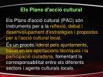 els plans d acci cultural