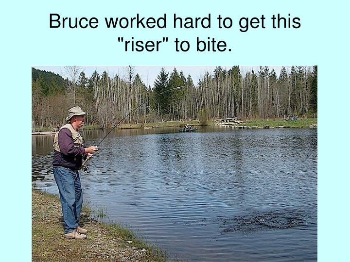 "Bruce worked hard to get this ""riser"" to bite."