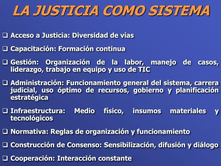 Acceso a Justicia: Diversidad de vías