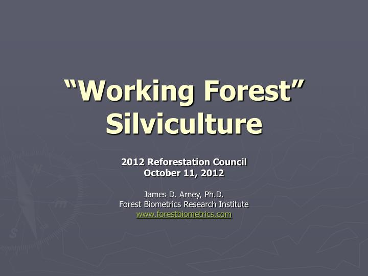 working forest silviculture n.