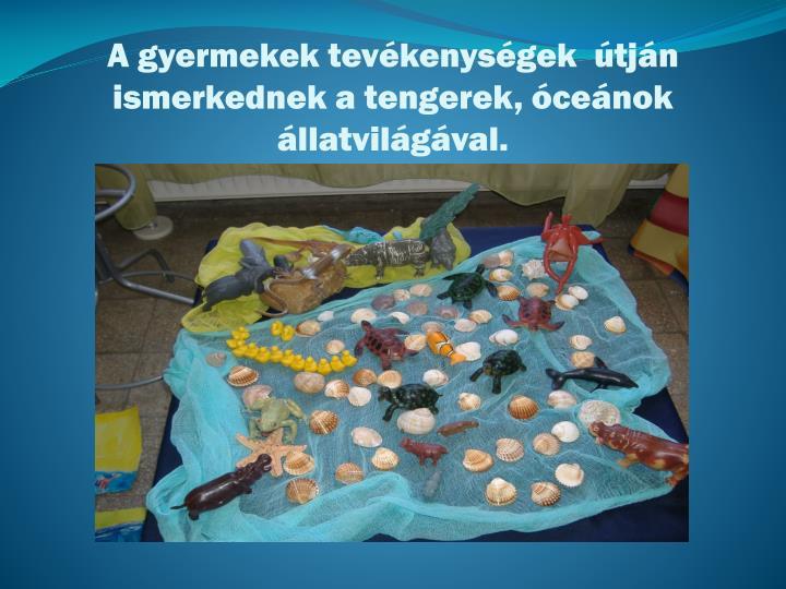 A gyermekek tevékenységek  útján ismerkednek a tengerek, óceánok állatvilágával.