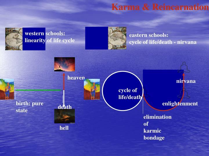 Karma & Reincarnation