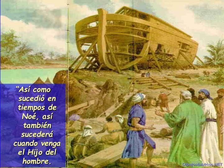 """""""Así como sucedió en tiempos de Noé, así también sucederá cuando venga el Hijo del hombre."""