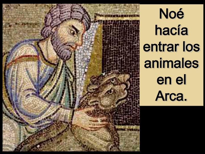Noé hacía entrar los animales en el Arca.