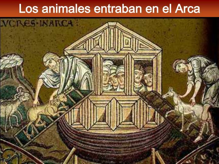 Los animales entraban en el Arca