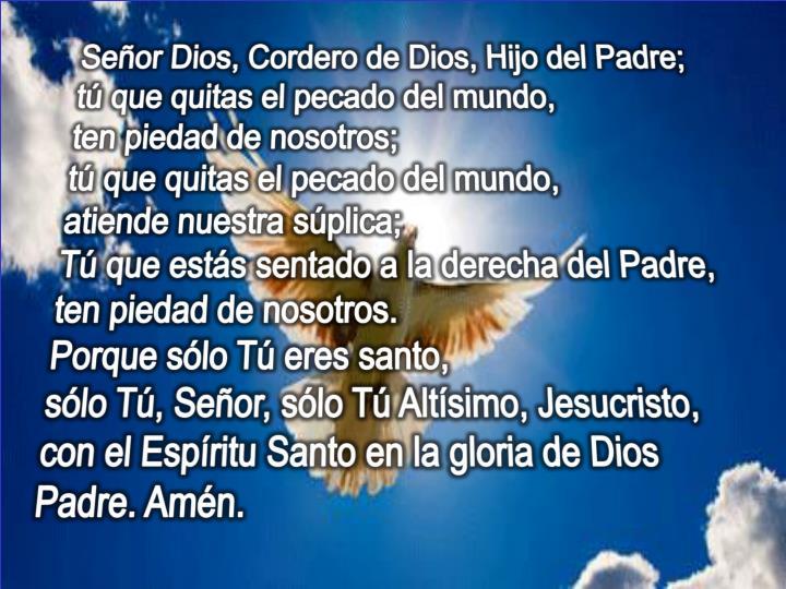 Señor Dios, Cordero de Dios, Hijo del Padre;