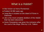 what is a hobbit