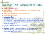 section two magic stem cells