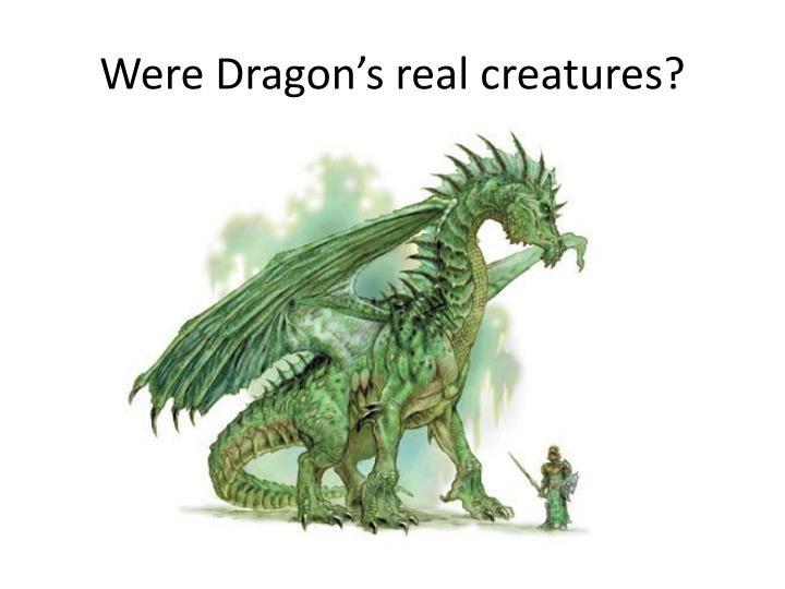 Were Dragon's real creatures?