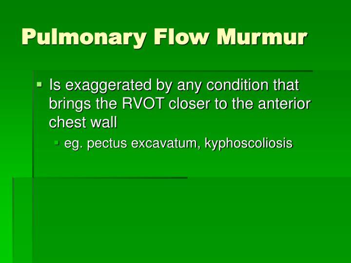 Pulmonary Flow Murmur