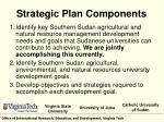 strategic plan components
