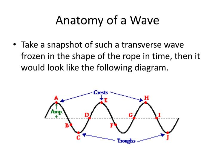 Ppt Lesson 3 Properties Of A Wave The Anatomy Of A Wave Frequency