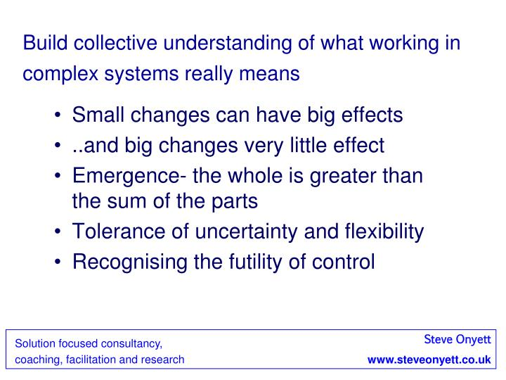Build collective understanding of what working in complex systems really means