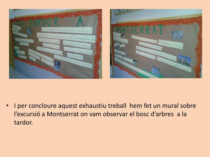 I per concloure aquest exhaustiu treball  hem fet un mural sobre l'excursió a Montserrat on vam observar el bosc d'arbres  a la tardor.